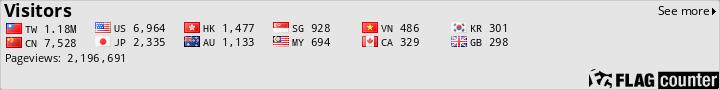 顯示訪客國籍的流量統計